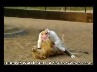 Çılgın Arap bir Aslan ile güreşiyor !