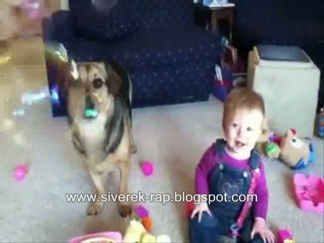 bebek baloncuk köpek komik bebek köpek