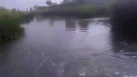 Su Sesi Suyun Etkileyici Rahatlatıcı Sesleri Doğa Manzarası Su Sesi Akarsu Manzarası Tabiat Manzaras