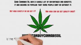CBD oils in the online market