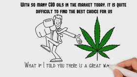 Getting To Know The Cbd Oil Products