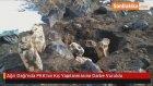 Ağrı Dağı'nda PKK'nın Kış Yapılanmasına Darbe Vuruldu