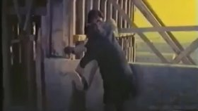Fırtına Behçet - Behçet Nacar & Emel Özden ( 1975 - 50 Dk )