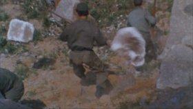Ape ( 1976 ) Fragman