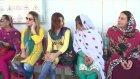 Pakistanlı Trans Sürücülere X İşaretli Ehliyet