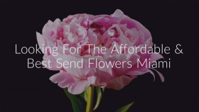 Call @ 786 - 422 - 5849 For Send Flowers Miami