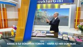 Kanal D Canlı Yayın HD