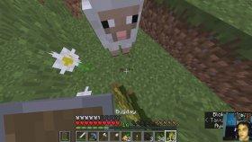 Kuzenlerle Minecraft Survival #11 - Artık Kurt Köpeklerimiz Var