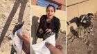 Kuş Korkusundan Kazara Kaktüse Oturan Kız