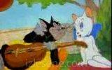 aşık kedi izlesene com video