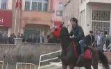 "Erzurum""da Gangnam Style Yapan At"