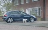 Köpek Araba Takliti Yaparsa ! ( Süper Araba Reklamı )