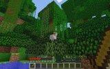 Minecraft Survival Co - Op Bölüm 1 - Batu İle Koyunlar