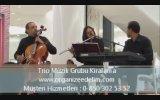 Trio Müzik Grubu - Kokteyl , Karşılama , Açılışlarda Trio Grubu