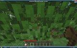 Minecraft ilk gün nasıl geçirilir (BAŞLIYORUZ):)