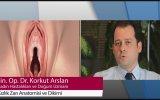 Kızlık Zarı Anatomisi ve Dikimi - ( Jin.Op.Dr.Korkut Arslan )