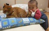 Kedinin Kuyruğunu Yemeye Çalışan Bebek