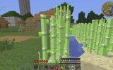 Minecraft Yogbox - Bölüm 27 - Kaçak Kat Çıkıcam