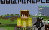 Minecraft : Mini Games - Wizards - Takım Oyunu !