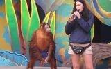 Sahibiyle Dalga Geçen Zeki Taklitçi Orangutan