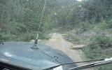 Jeep Cj5 Odun Dolu Dağ Yolu Geçişi