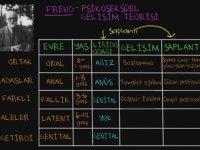 Freud'un Psikoseksüel Gelişim Teorisi