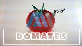 Domates Çizimi ( Tomatoes Drawing , Art , Myçizim