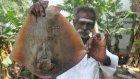 Hindistan'da Damak Çatlatan Balık Kızartması
