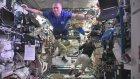 Astronotlar Uzayda Mannequin Challenge Yaptılar