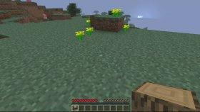 Minecraft Çit Yapımı