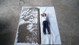 Yetenekli Sanatçıdan 20 Bin Çekirdek ile Portre Yapımı