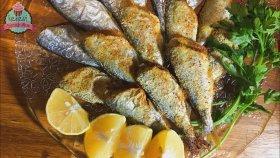Fırında Balık Nasıl Yapılır ? / Yağ Kullanmadan Hamsi Çinekop Izgara | Ayşenur Altan