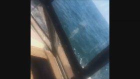 Tekne Gezisine Çıkan Aileye Kambur Balinanın Sürprizi