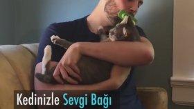 Kedisini Anlamak İçin Empati Yapan Adam