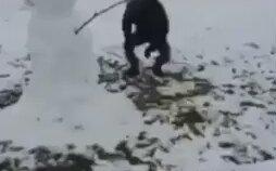 Kardan Adama Uçan Kafa Atan Adam