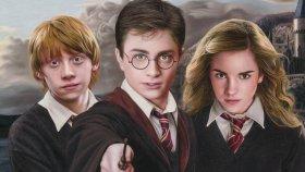 Aşırı Gerçekçi Harry Potter Çizimi ( Harry Potter , Ron Weasley , Hermione Granger )
