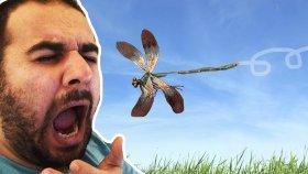 Hapşırınca Altın Çıkacak Esneyince Böcek Girecek - Kabulse Butona Bas