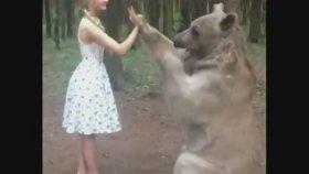 Ayı ile Çak Bir Beşlik Yapan Rus Kız