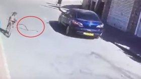 Bisikletle Yolda Giden Kıza Yılanın Saldırması