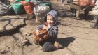 Horoza İşkence Çektirerek Seven Çocuk