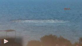 Çanakkale Ayvacık'ta Ürküten Görüntü