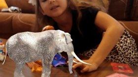BİM den aldığımız 3D Sihirli Kartlar