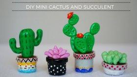 DIY Mini Kaktüsler